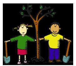 Саджанців фруктових дерев
